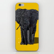 African Elephant iPhone & iPod Skin
