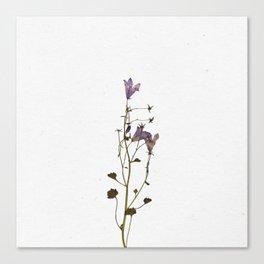 Forever Flower Canvas Print