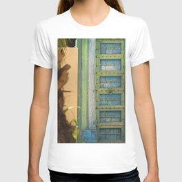 Ancient Royal Door Of Mystery T-shirt