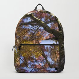 Beautiful Trees / 15 Backpack