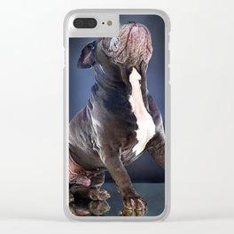 Super Pets Series 1 - Super Liam Clear iPhone Case