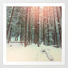 snow forest sun Art Print