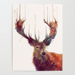 Red Deer // Stag Poster