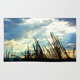 Arizona Sky Rug