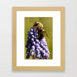 Mine!  says bee Framed Art Print