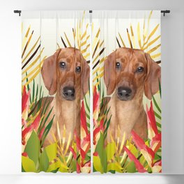 Little Dog with with Palm leaves Blackout Curtain