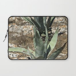 A capri plant Laptop Sleeve