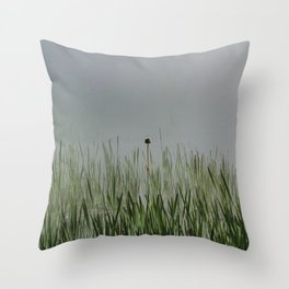 Old bullrush on a pond in the mist. Throw Pillow