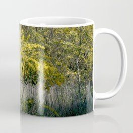Flowering Acacia Tree Coffee Mug