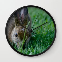 peter rabbit Wall Clock