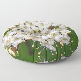 Insects on white wild flowers Floor Pillow