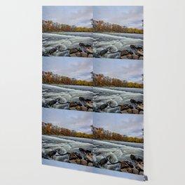 Heery Woods Dam Wallpaper