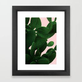 Cactus On Pink Framed Art Print