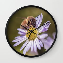Honey bee on a blue wood aster Wall Clock