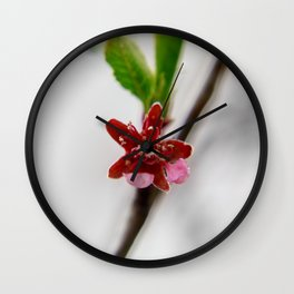 Red peach blossom Wall Clock
