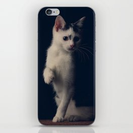 Miguel the Cat 2 iPhone Skin