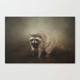 Midnight Marauder Canvas Print