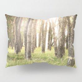 Pinewood Pillow Sham