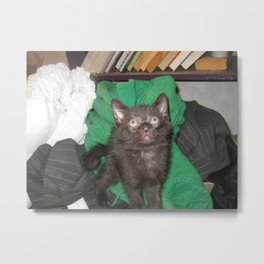 Black Kitten Adorable Metal Print