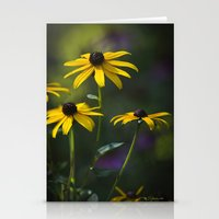daisies Stationery Cards featuring Daisies by Christina Rollo