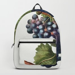 Grape vine (Vitis vinifera) from Traite des Arbres et Arbustes que lon cultive en France en pleine t Backpack
