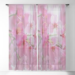 Pink Blossoms Sheer Curtain