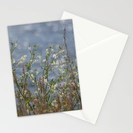 Honey Clover Stationery Cards