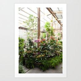 The Garden Shop Art Print