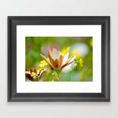 Pastel Meadow Framed Art Print