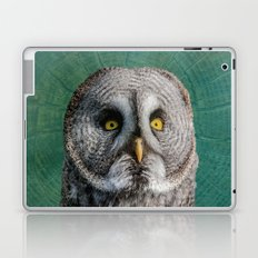 GREY OWL Laptop & iPad Skin