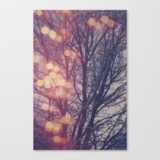 All the pretty lights (2) Canvas Print