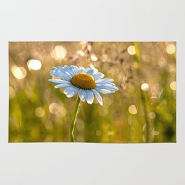 Floral Daisy Flower Flowers in a meadow after rain Rug