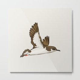 Simple Minimalist Manx Shearwater Flying Metal Print