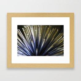 Quills Framed Art Print