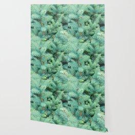 Thorns of Fir Wallpaper