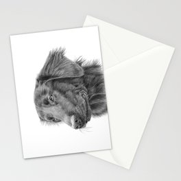 Flatcoated retriever bw Stationery Cards