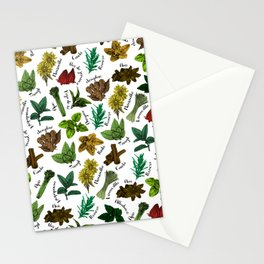 Tea Flavors // assorted teas for your enjoyment Stationery Cards