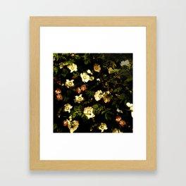 Floral Night I Framed Art Print