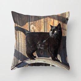 Rustic Jade Throw Pillow