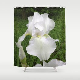 The Purity Of A Spring Time Iris Shower Curtain