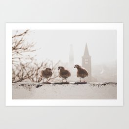 Little Talks by Omerika Art Print