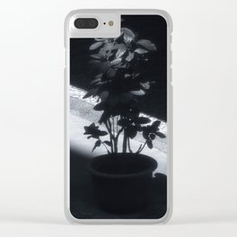 Plants in the sunshine Clear iPhone Case