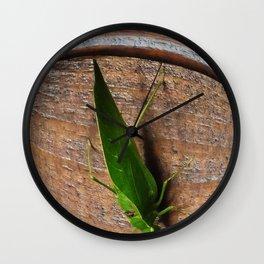 Katydid Wall Clock