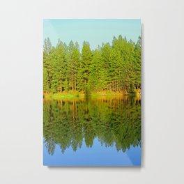 Glass Pond Metal Print