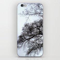 softly bending iPhone & iPod Skin