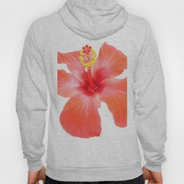 Red Hibiscus Vector Isolated Hoody