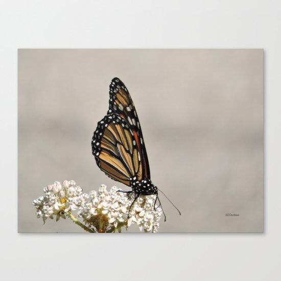 A Fine, Upstanding Monarch Canvas Print