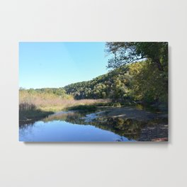 Where Canoes and Raccoons Go Series, No. 33 Metal Print