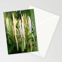 Closeup shot of Lonicera European Honeysuckle Flower Stationery Cards