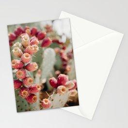 Cacti I Stationery Cards
